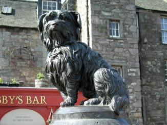 Retour sur l'histoire de Greyfriars Bobby, le chien le plus célèbre d'Ecosse