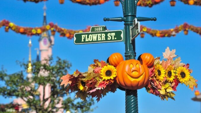 Disneyland : un blagueur condamné pour avoir fait croire à un attentat terroriste