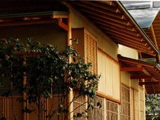 Le saviez-vous ? Un jardin japonais se cache au cœur de Paris !