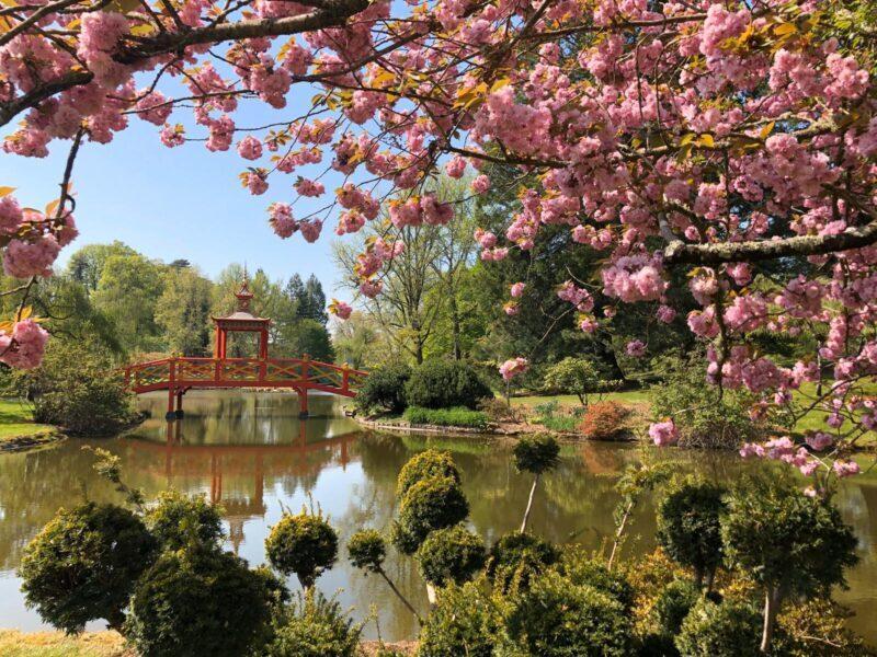 Découvrez le magnifique Parc Floral d'Apremont-sur-Allier ! - Cultea