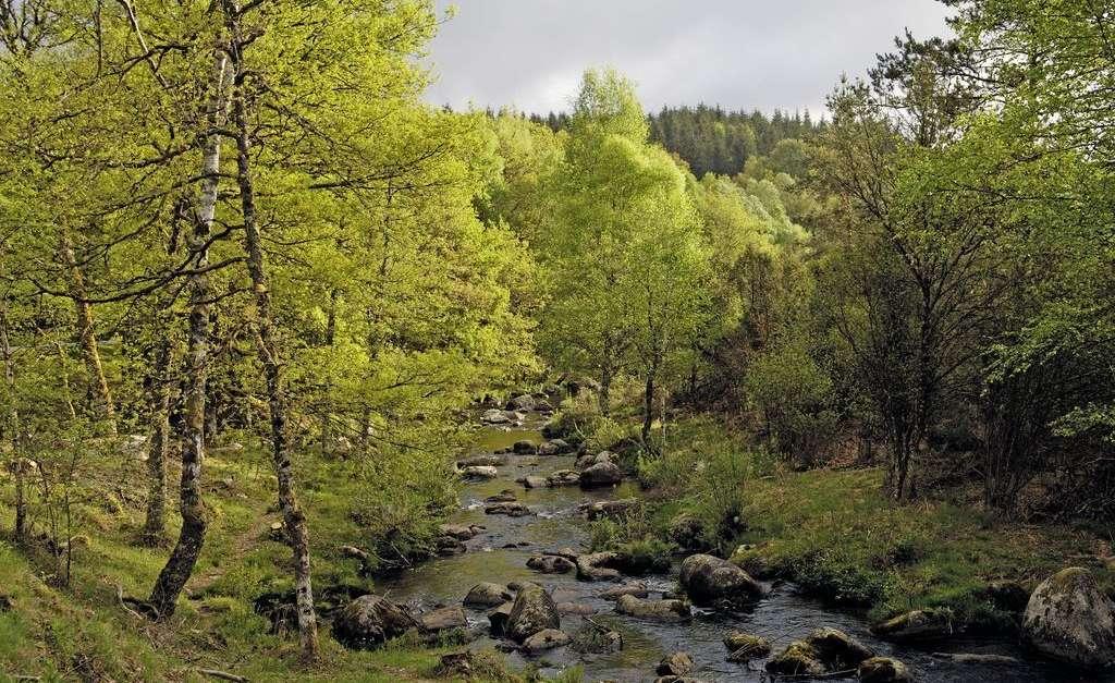 La vallée du Taurion - Cultea