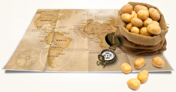 Découvrez l'histoire de l'introduction de la pomme de terre en Europe ! - Cultea