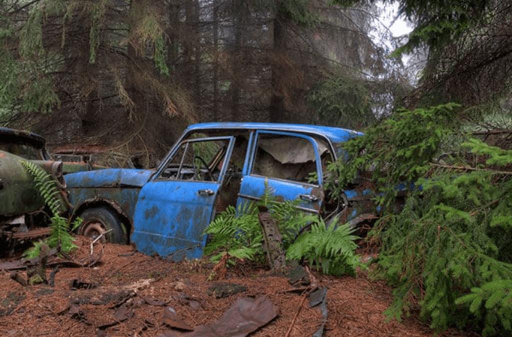 Cliché du cimetière de voitures américaines dans la forêt près de Châtillon, en Belgique - Cultea