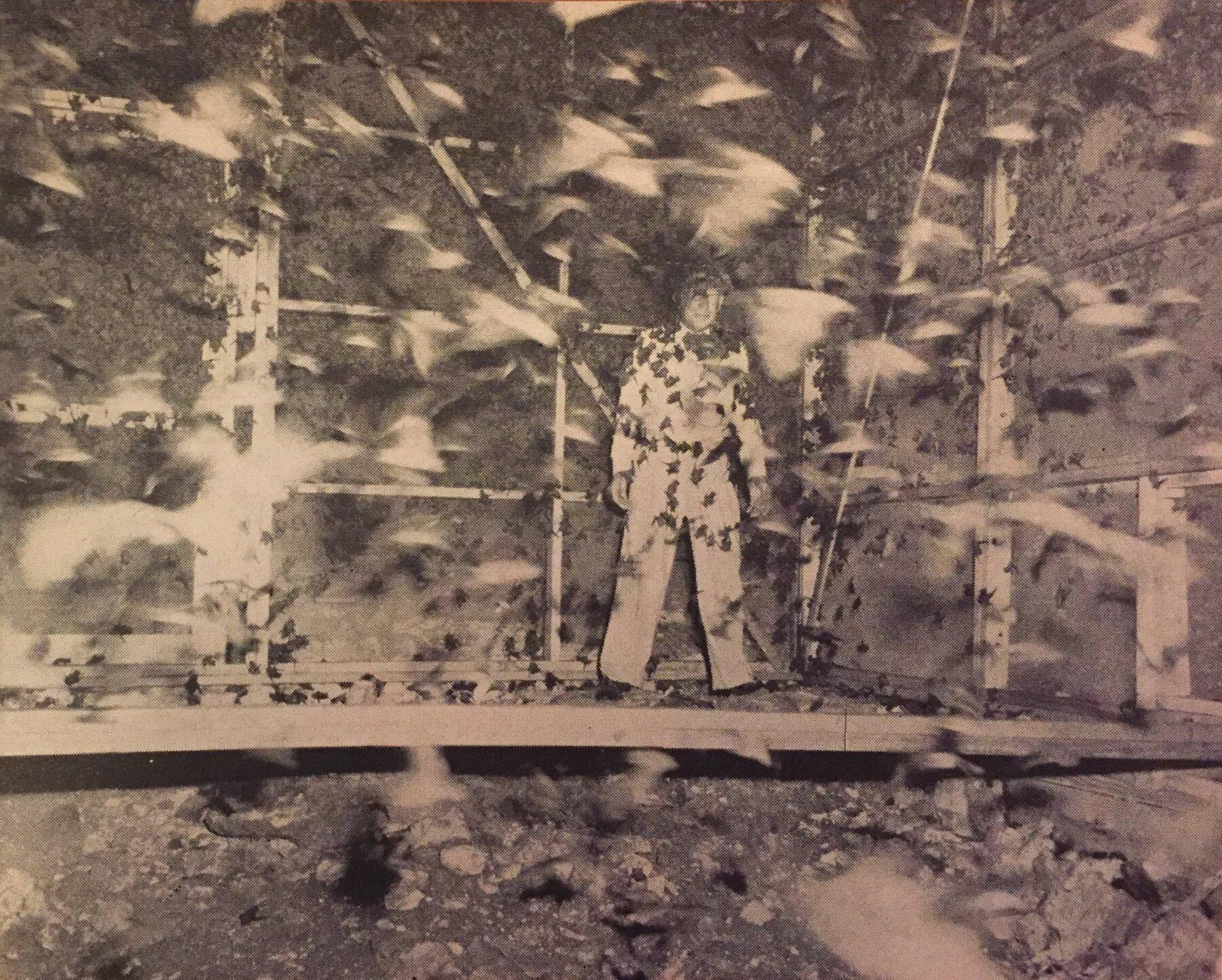 """La """"bombe à chauves-souris"""" ou quand les USA se prenaient pour Batman"""