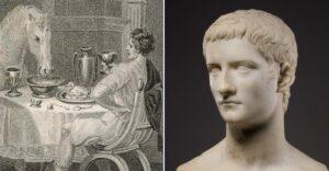 Incitatus cheval Caligula
