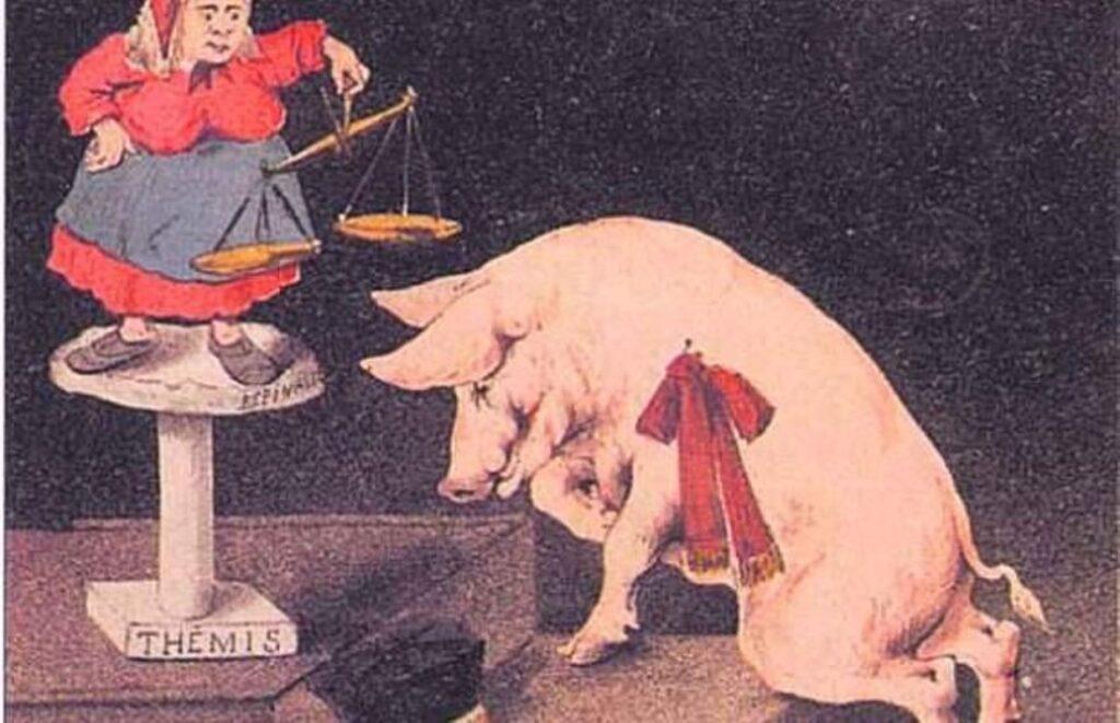 Procès d'un cochon - Cultea