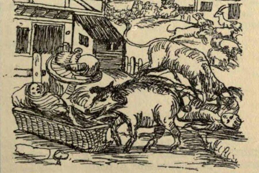 Procès d'animaux - Cultea
