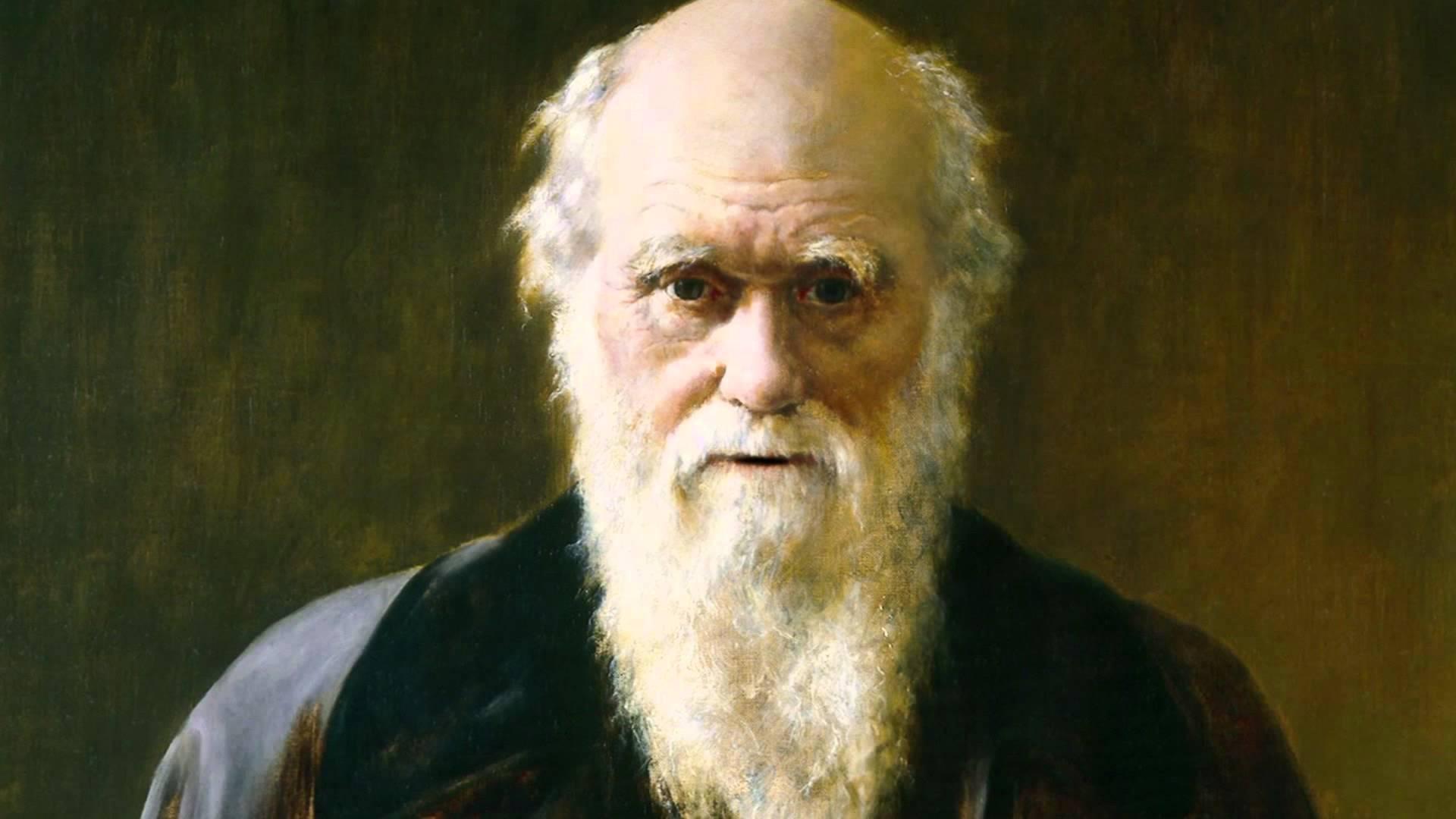 Charles Darwin : le scientifique qui inventa la première chaise de bureau