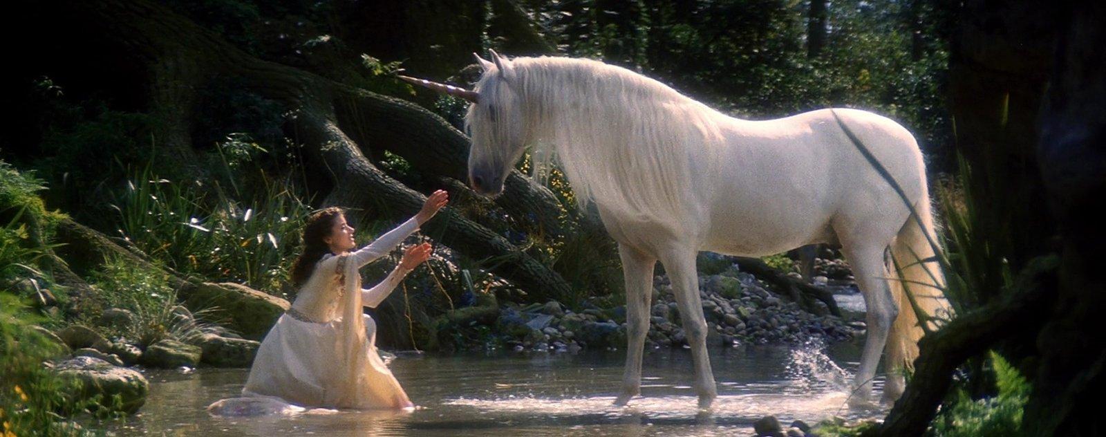 La licorne : les origines, mythes et symboliques à travers l'histoire