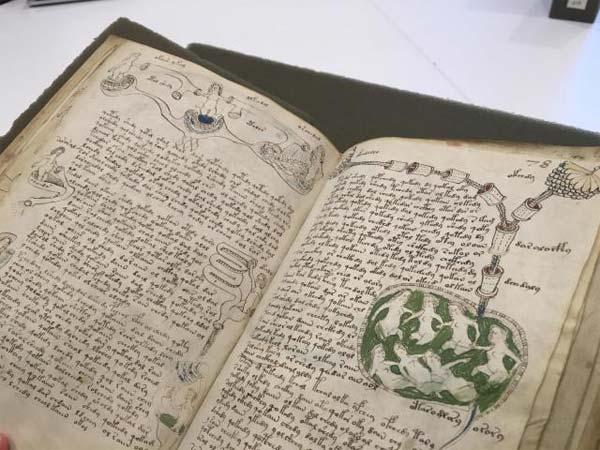 Le mystère du manuscrit de Voynich à la langue et à l'auteur inconnus