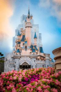 Château Disneyland - Rénovation - Cultea - @uzanrobin
